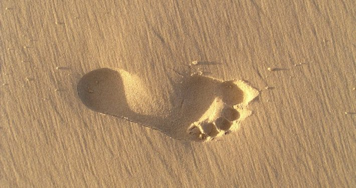 footprint 347817 960 720